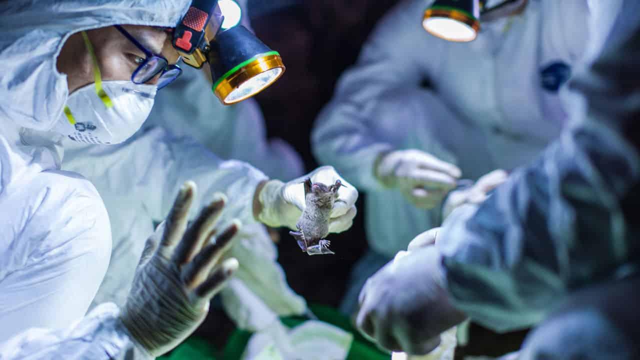 الغايات من سباق الدول لإصدار علاج فيروس كورونا