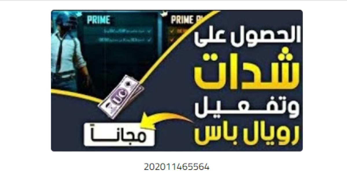 202011465564