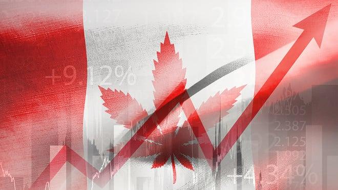 انهيار بورصة كندا فرصة تحويل 2000 دولار إلى 20 ألف دولار