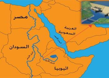 يمثل القطاع الزراعي في مصر 17% من الناتج القومي الإجمالي وهناك أكثر من 10 مليون يد عاملة في هذا القطاع، وهذا يعني أن تأثير سد النهضة على الزراعة في مصر سيكون واضحا.