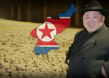 مجاعة كوريا 2021: نقاط قوة اقتصاد بيونغ يانغ