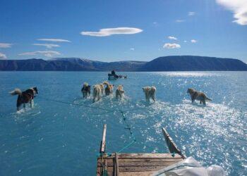 حظر التنقيب عن النفط والغاز عالميا والبداية من جرينلاند