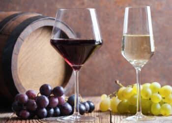 حقائق عن سياحة النبيذ وفرص الإستدامة